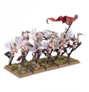 Witch Elves / Sisters of Slaughter