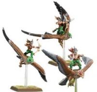 Wood Elf Warhawk Riders