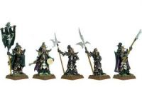 Dark Elf Black Guard Command
