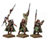 Wood Elf Eternal Guard Command (3 models)